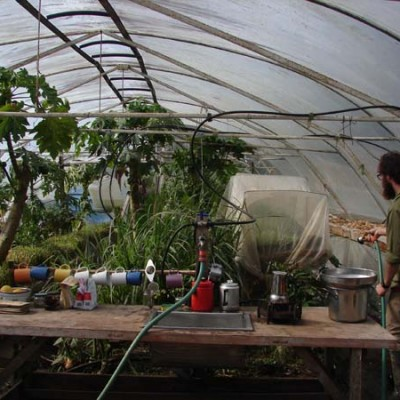 Watering the greenhouse - coffee makings foreground using a burner fuelled by biogas produced on the property