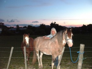 Helen Peart treats a horse with Bowen Therapy